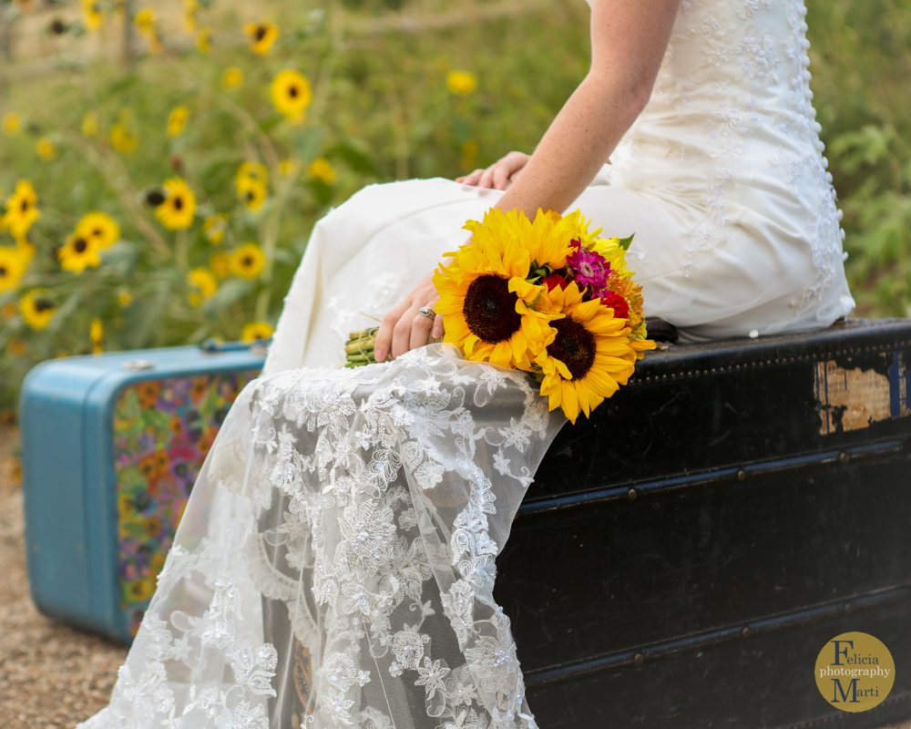 Colorado Bridal Portrait-6