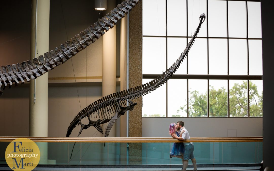 Magical Engagement: Denver Museum of Nature and Science