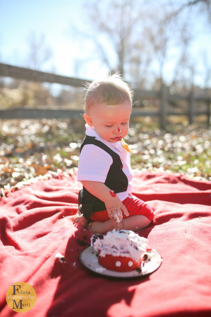 Denver One Year Old-27