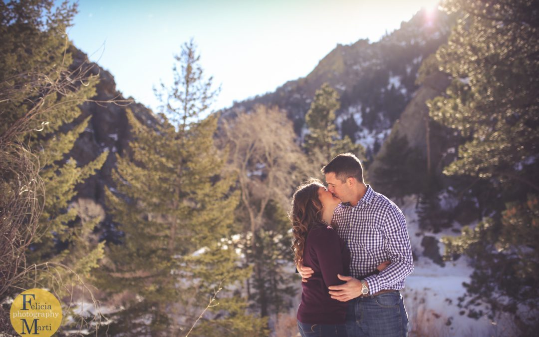 2016's Winter Engagement Sessions