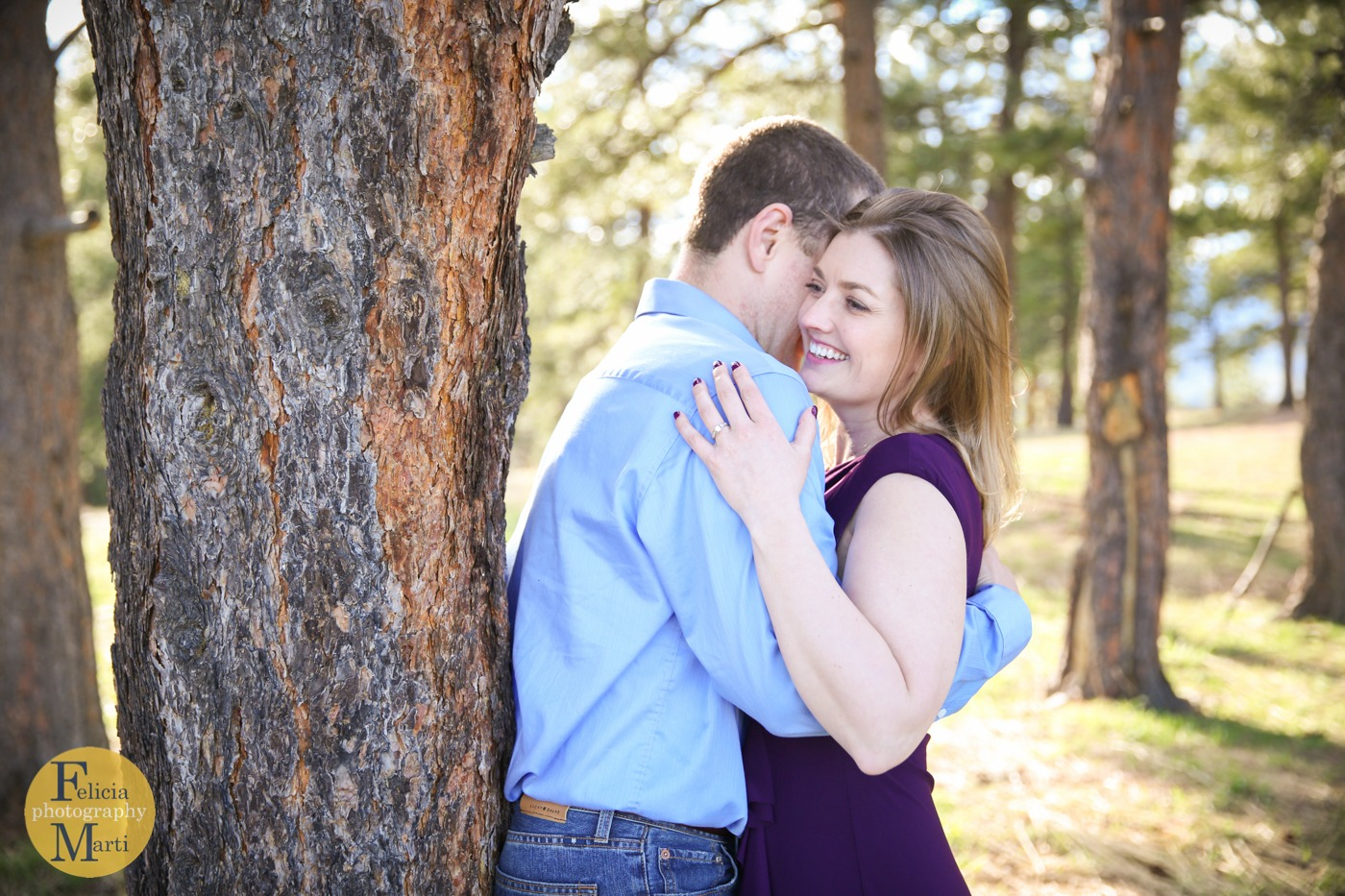 Lookout Mountain Engagement Session